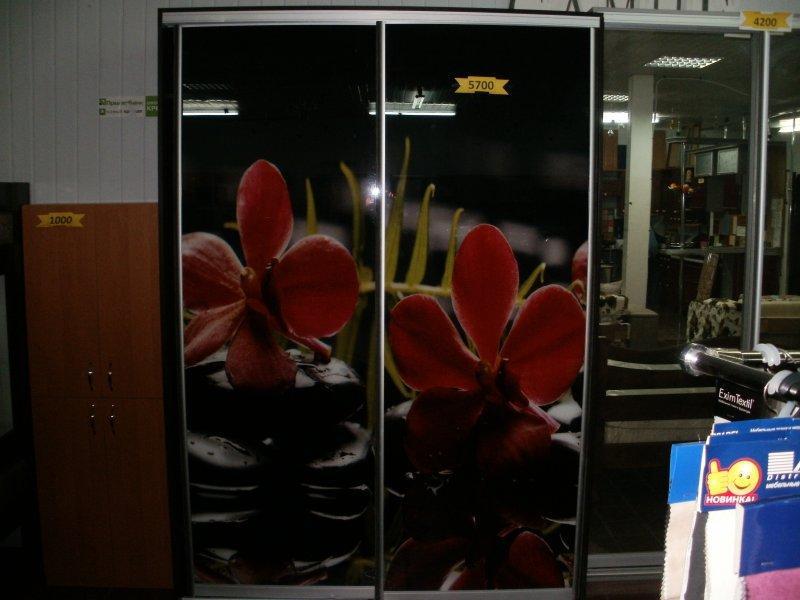 Двери24 1 Мебельный шкаф купе Днепродзержинск
