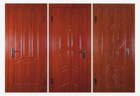Входные двери VH10