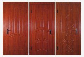 Входные двери VH5